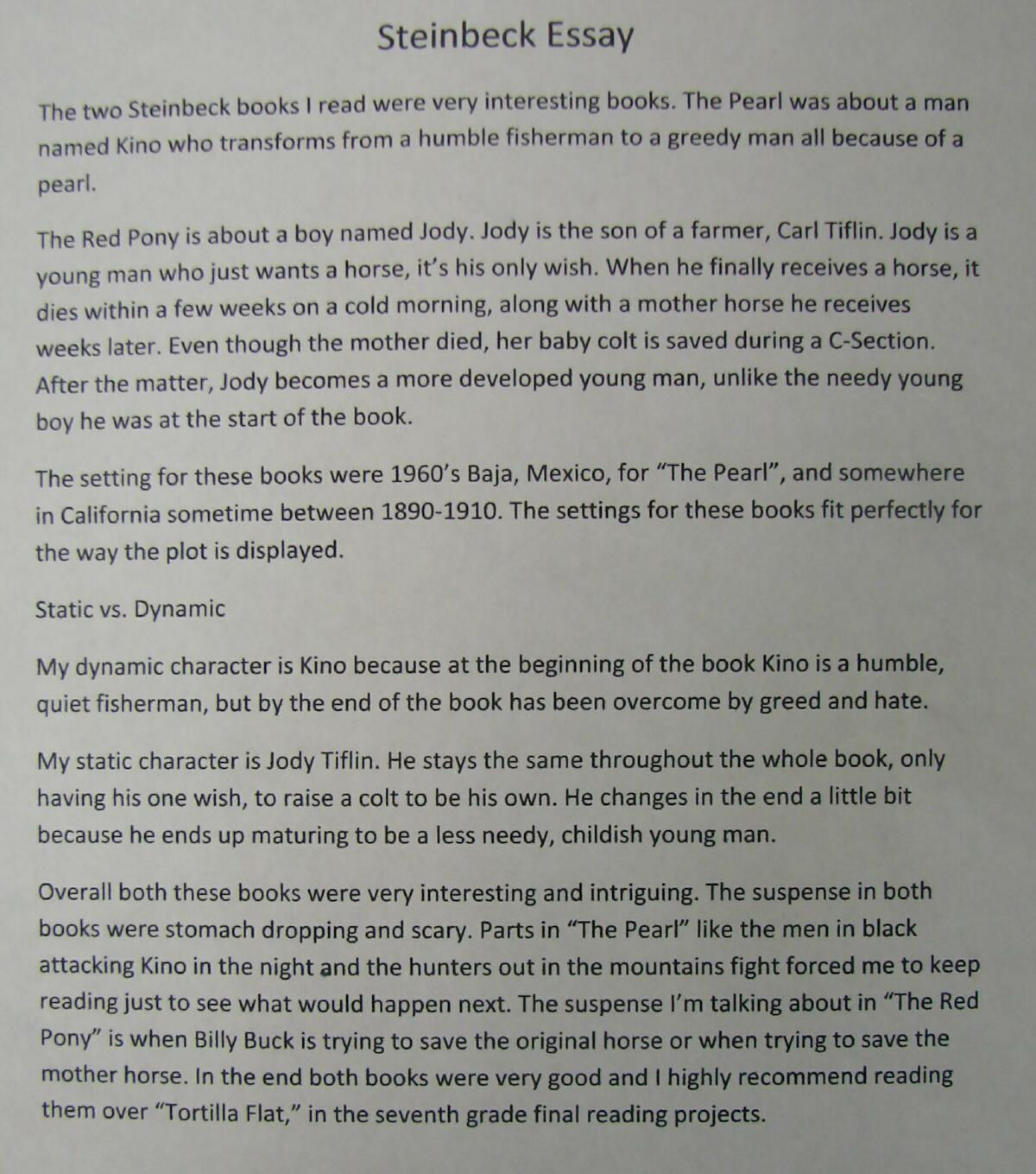 parents love story essay